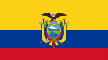 https://www.interweavesolutions.org/bolivia/
